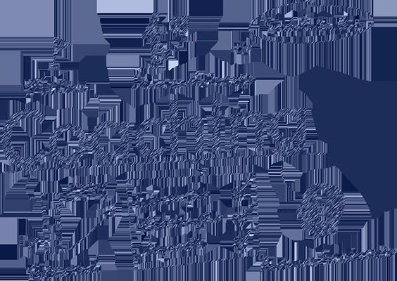 coaching_450